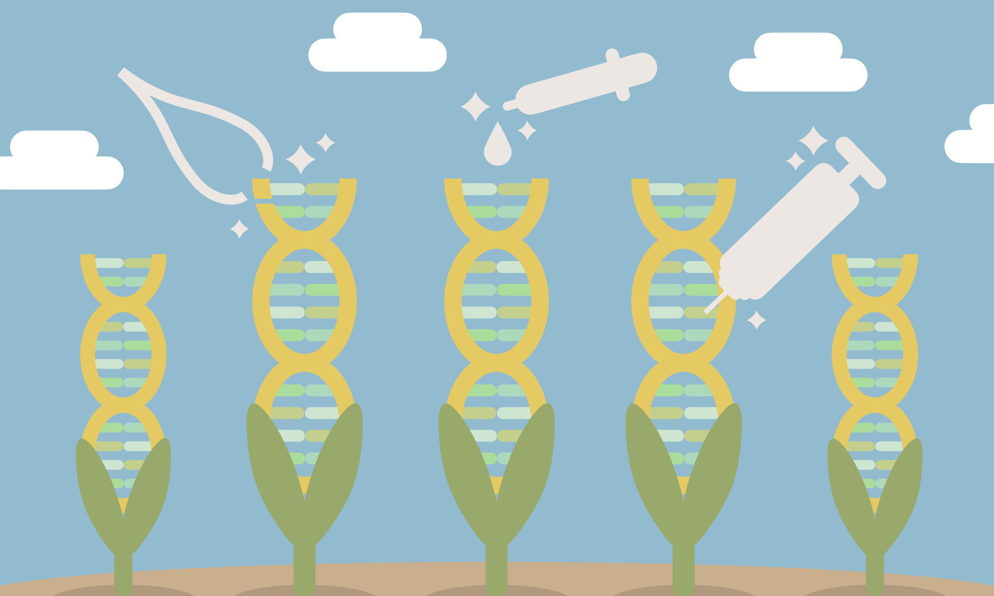 Weighing the Positives and Negatives in GMOs
